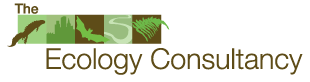 Ecology Consultancy